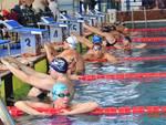 Ottimi risultati al Trofeo Azzurri D'Italia per l'Amatori Nuoto Savona