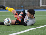 Celle Vs Voltrese