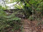 Parco di Portofino e il mistero della pista