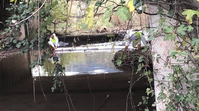 Sversamento rio Arveglio Albenga