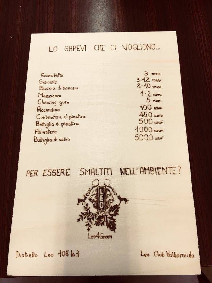 Leo Club Valbormida Ambiente