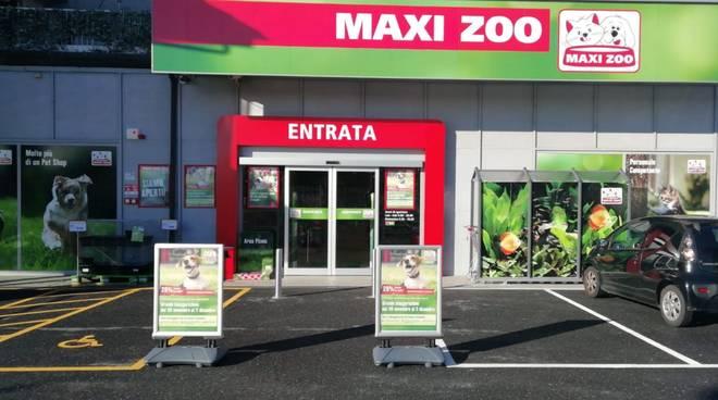 Maxi Zoo Albenga
