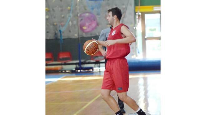 Alex Lo Piccolo