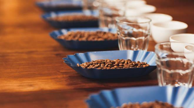 caffè la genovese