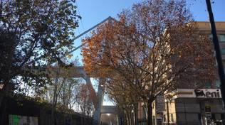ponte morandi commemorazione