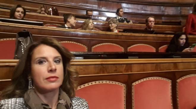 Ilaria Cavo Concerto Natale Senato