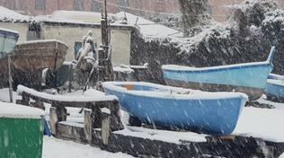 allerta neve genova 23 gennaio 2019