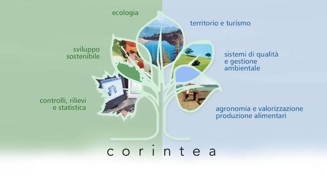 corintea