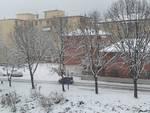 neve 23 gennaio