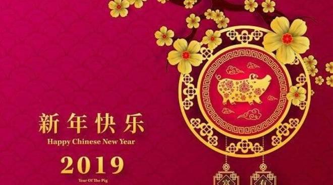 Capodanno cinese Anno Maiale