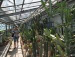 orto botanico genova