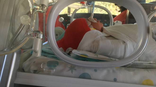 Trasporto neonatale elicottero gaslini