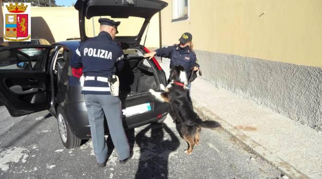 Controlli Antidroga Cani Savona Polizia