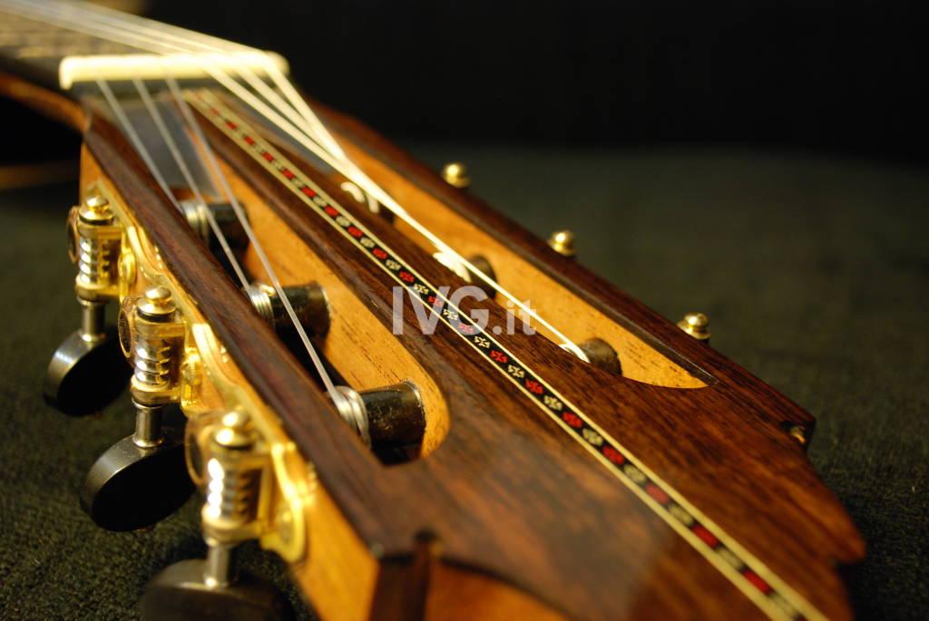 Chitarra strumento IVG
