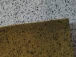 foto pannelli lungomare canepa