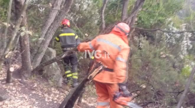 Incendio di bosco sulle colline di Albenga