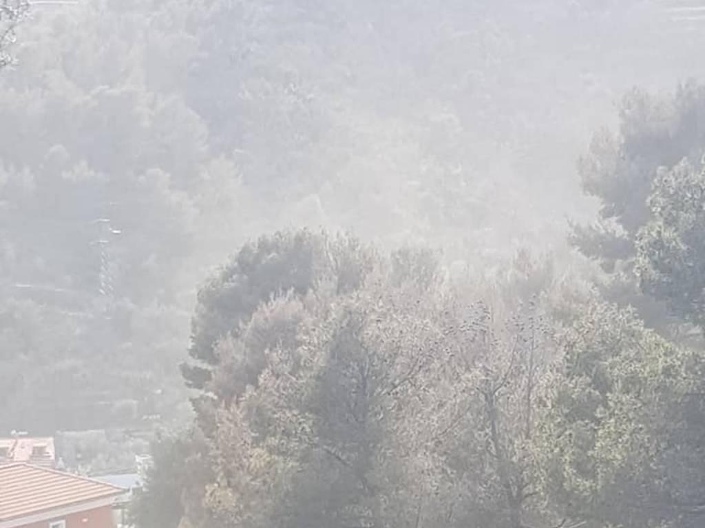 Nebbia gialla Alassio Andora
