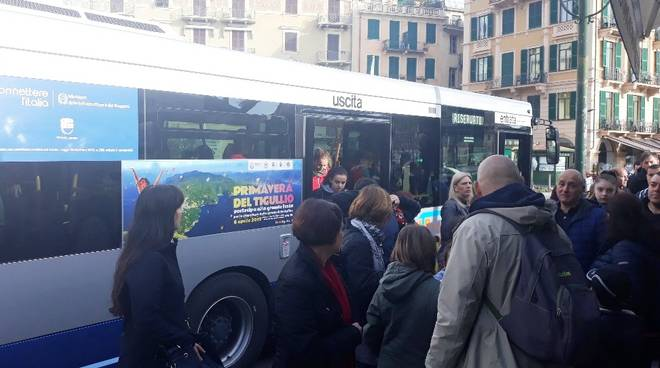 Atp bus 82
