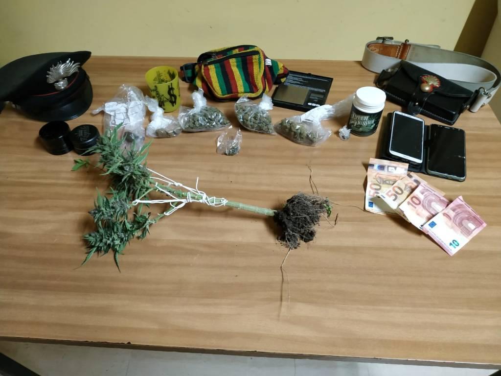 carabinieri alassio marijuana