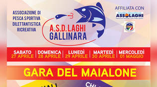 Laghi Gallinara di Bastia d'Albenga