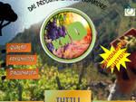 KM0 -Mercato Agricolo e delle Autoproduzioni