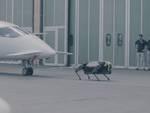 iit robot aereo