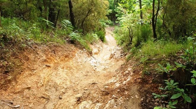 sentieri biker fango