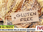 Penne Pesto Gluten Free