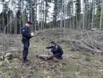 bosco santo stefano carabinieri forestali