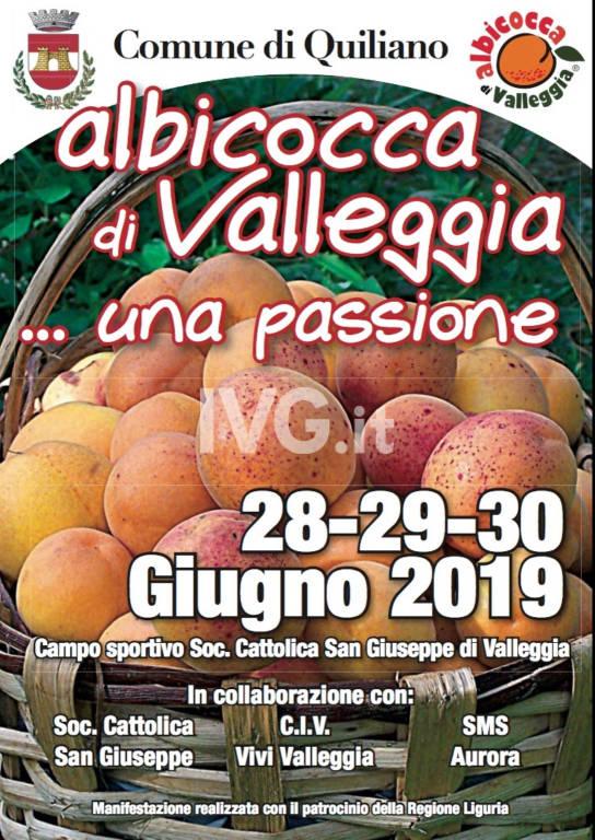 Albicocca Valleggia ..... una Passione