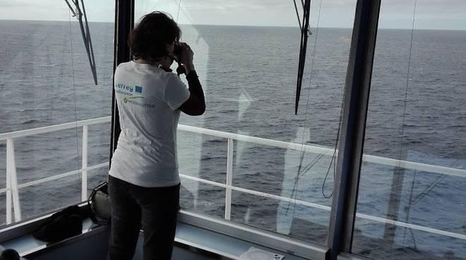 eDNA Corsica Sardinia ferries