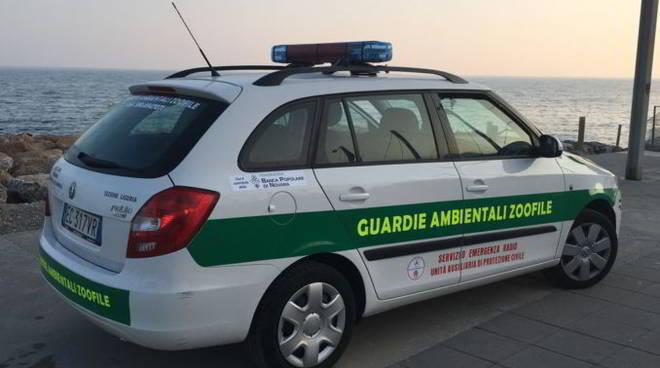 Guardie zoofile ANTA