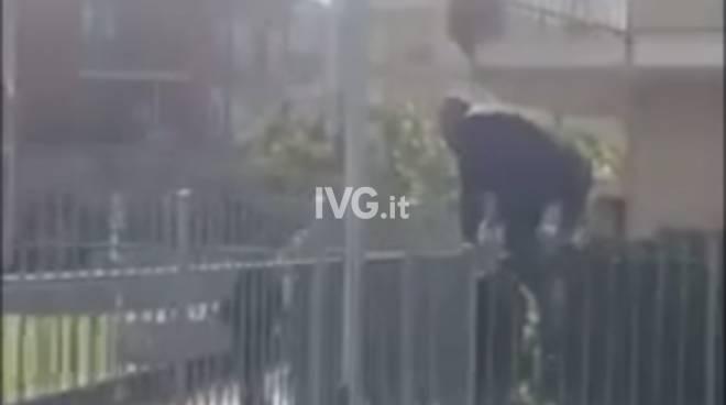 Ladri in fuga Albenga