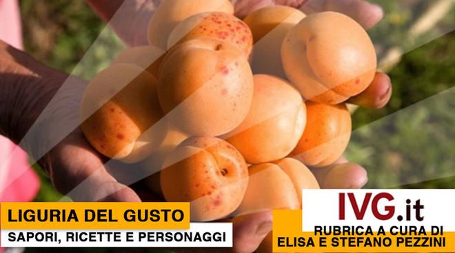Liguria del Gusto new