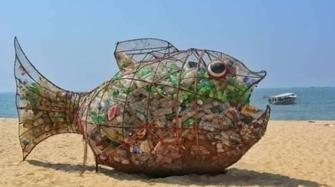 pesce raccolta plastica