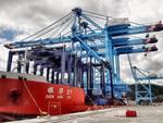 vado gateway gru Maersk piattaforma apm Terminals