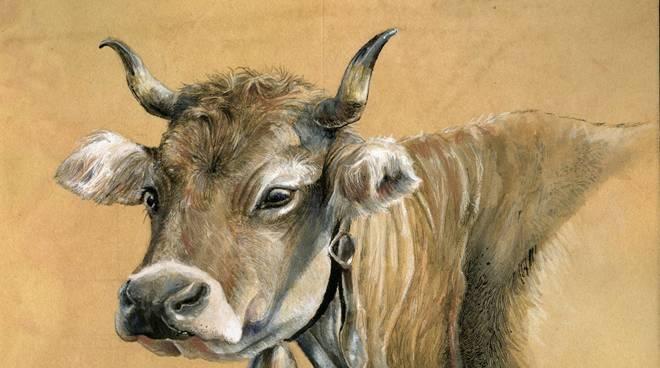 Stefania Salvadori antica fiera bestiame