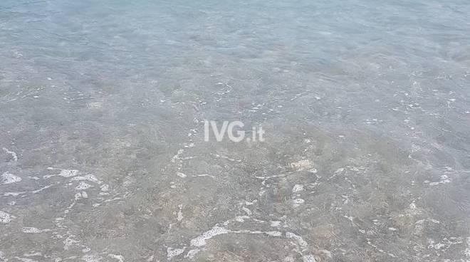 mare sporco pietra
