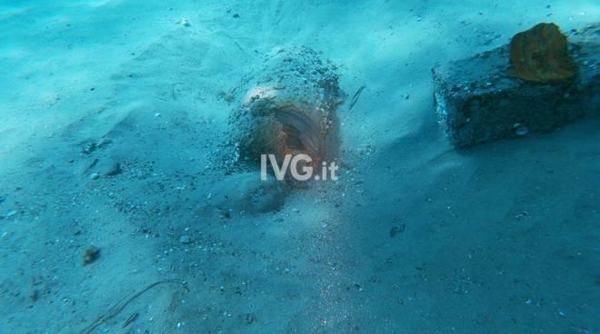 """La """"bomba"""" trovata al largo di Laigueglia"""
