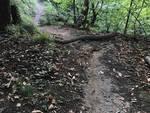 Ostacoli contro mountain bike