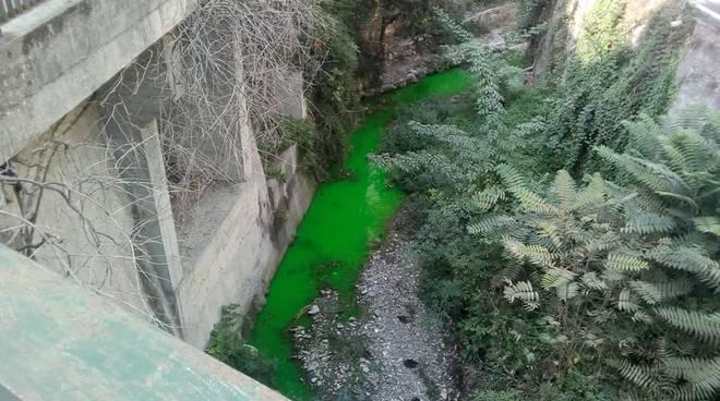 fluoriscina nel rio priaruggia