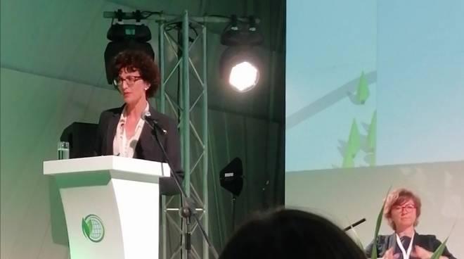 Caprioglio III Climate Forum of Cities Mosca