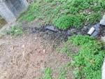 Sversamento liquami fiume Bormida Carcare