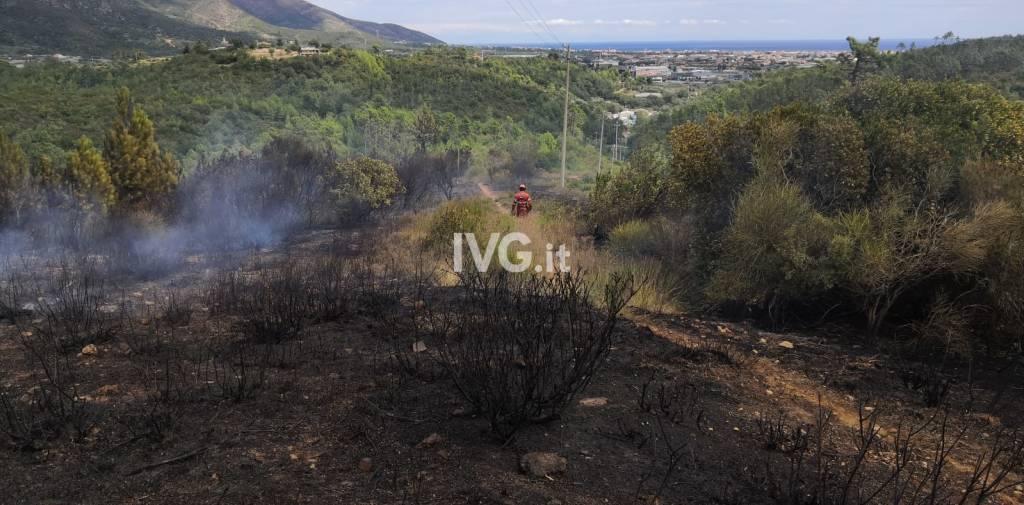 Incendio di bosco a Cenesi