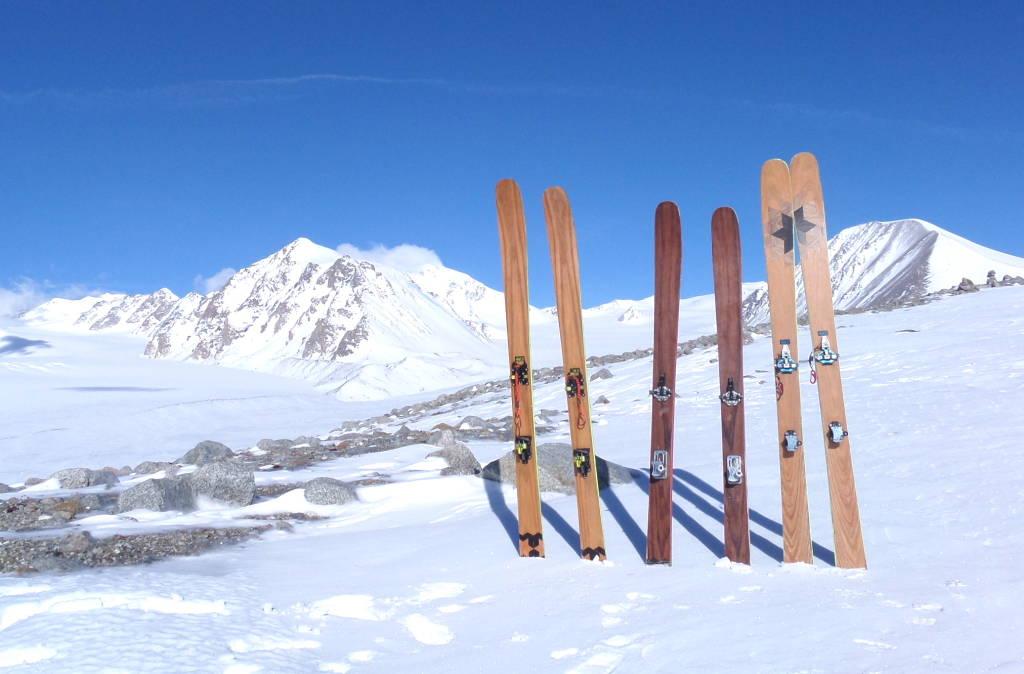 MrTree Skis