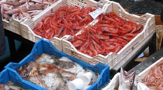 Pesca Mercato Pesce
