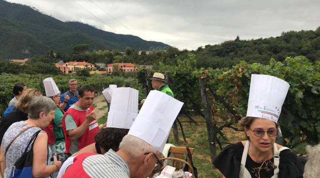 food-wine marketing Albenga