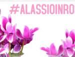 Alassio in rosa