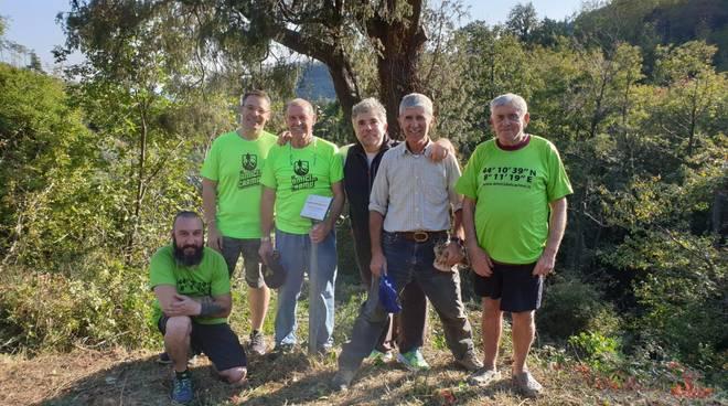 amici del carmo albero monumentale verzi