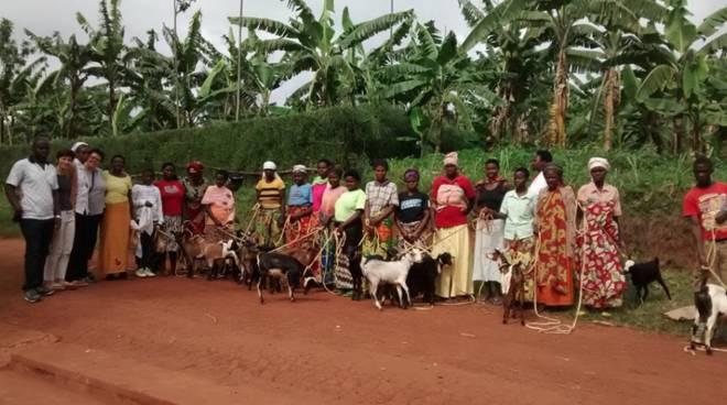 Apericapra Rwanda Testa Alassio